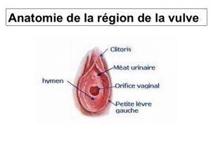Nymphoplastie et hymenoplastie